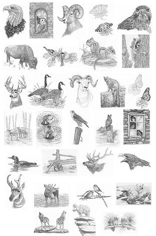 30 wildlife designs 30 tonal patterns 30 line patterns of each design